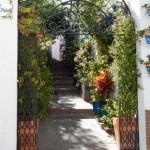 La esencia de andalucía por las calles de Estepona